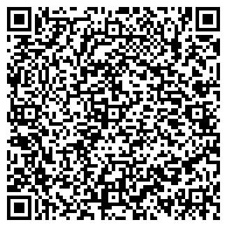QR-код с контактной информацией организации Blanco, ТОО