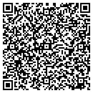 QR-код с контактной информацией организации Malish & K