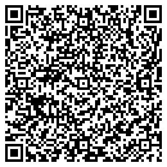 QR-код с контактной информацией организации ДЕЛЬФИН, ИП