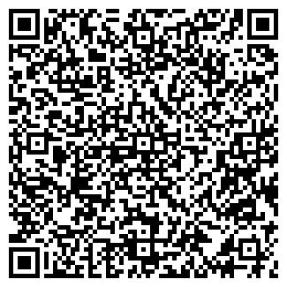 QR-код с контактной информацией организации ЛЕДЯНОЙ МИР, ИП