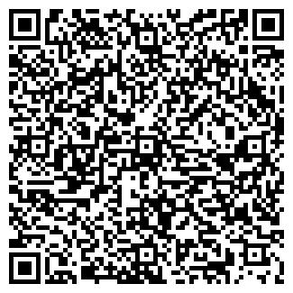 QR-код с контактной информацией организации ГАЛАКТИКА АЙС, ИП