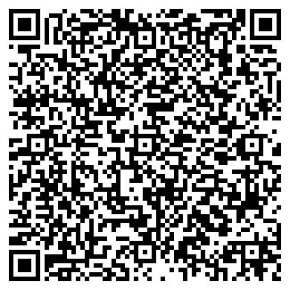 QR-код с контактной информацией организации Панчик, СПД
