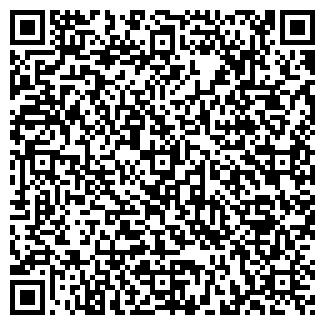 QR-код с контактной информацией организации СНЕЖЕНЬ ТК, ЧП