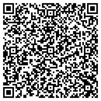 QR-код с контактной информацией организации Avto paradise (Авто парадайс), ИП