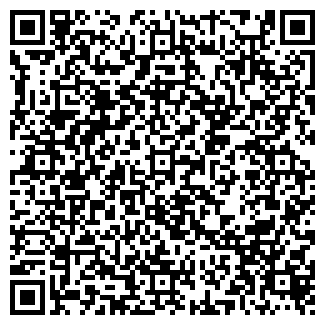QR-код с контактной информацией организации ИП Династия