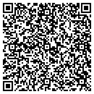 QR-код с контактной информацией организации Салон-Сервис