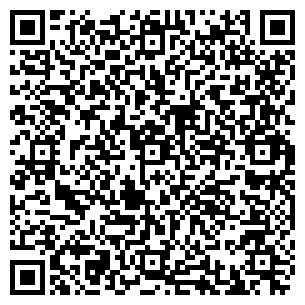 QR-код с контактной информацией организации Динеро-Плюс, ООО
