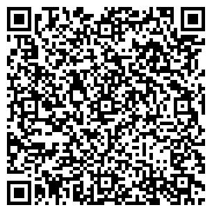 QR-код с контактной информацией организации Высоцкий, СПД