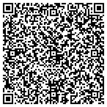 QR-код с контактной информацией организации Компания «Lion Systems»