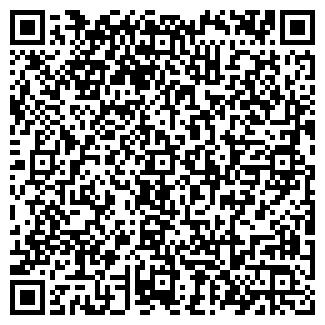 QR-код с контактной информацией организации ВЕКТОР МАГАЗИН № 33
