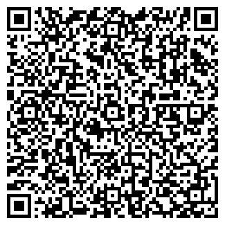 QR-код с контактной информацией организации Tts (Ттс), ИП