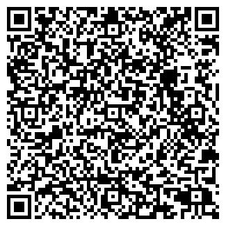QR-код с контактной информацией организации СПД Zestorm