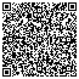 QR-код с контактной информацией организации ВИСИМ, ООО