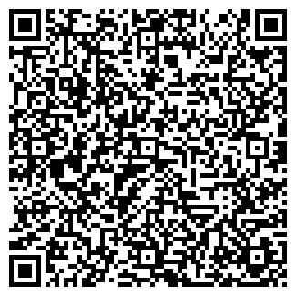 QR-код с контактной информацией организации Копи ленд, ИП