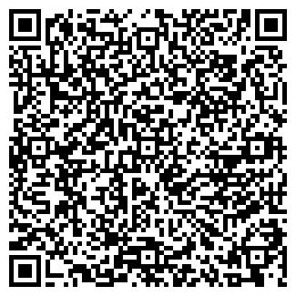 QR-код с контактной информацией организации DINASTIA