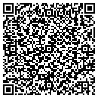 QR-код с контактной информацией организации Шиссль, ООО