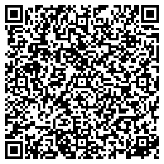 QR-код с контактной информацией организации Карине, ЧП
