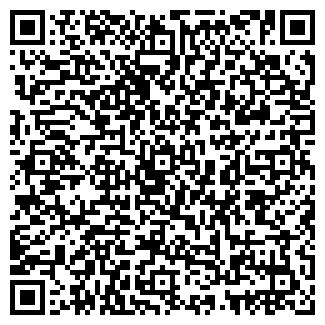 QR-код с контактной информацией организации ЧЕРЕМУШКА ООО ШАР