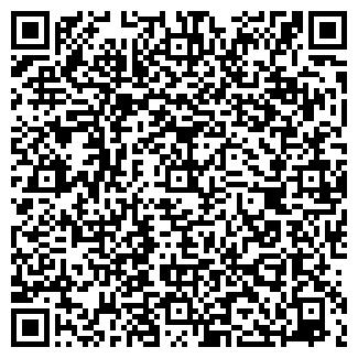 QR-код с контактной информацией организации Велайс, ЧП