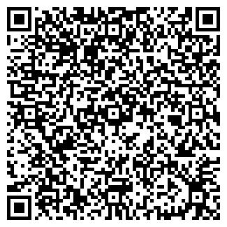 QR-код с контактной информацией организации Wellen