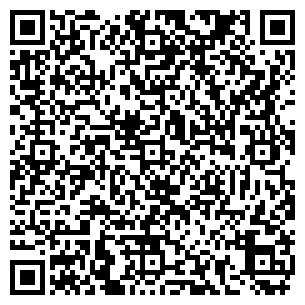 QR-код с контактной информацией организации Foton & Daimler, ТОО