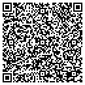 QR-код с контактной информацией организации Владимиров, ИП