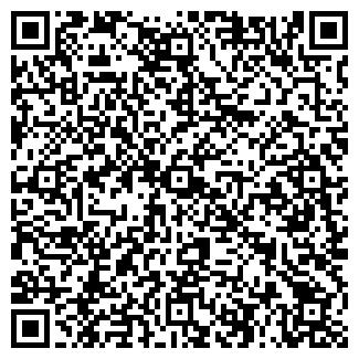 QR-код с контактной информацией организации Бабаев Е.Т, ИП