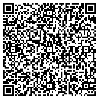 QR-код с контактной информацией организации ОРВИЛ
