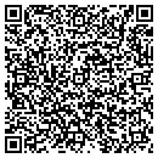 QR-код с контактной информацией организации ВОЛКОВОЙ, ЧП