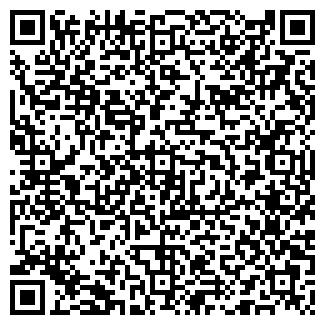 """QR-код с контактной информацией организации ИП """"Минамов"""""""