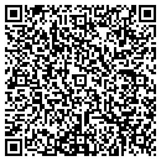 """QR-код с контактной информацией организации ИП """"Галкин"""""""