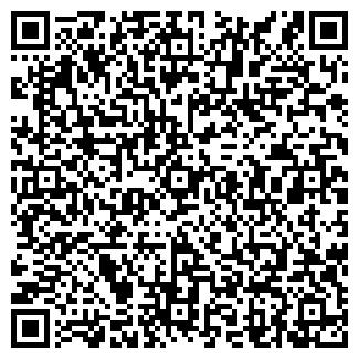 QR-код с контактной информацией организации TEAM VISION