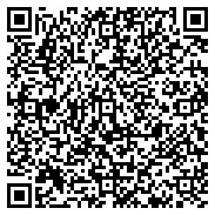 QR-код с контактной информацией организации Лион Стил, Компания