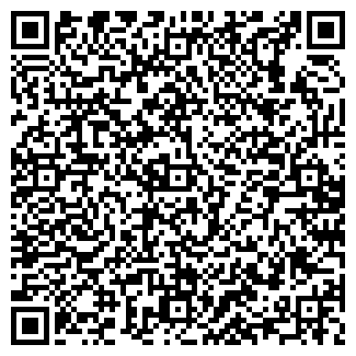 QR-код с контактной информацией организации Визард, ООО