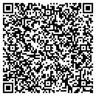 QR-код с контактной информацией организации Балгерим, ИП