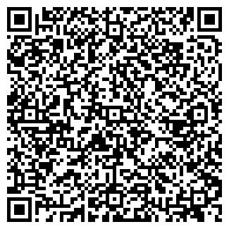 QR-код с контактной информацией организации Vsedetym