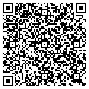QR-код с контактной информацией организации ИП Змиевский СА