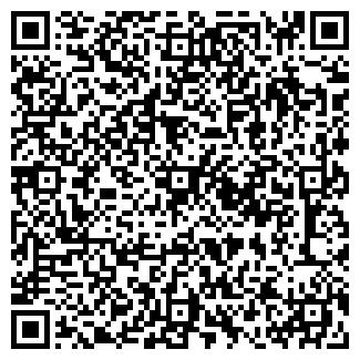 QR-код с контактной информацией организации Никополь Металл Сервис, ЧП