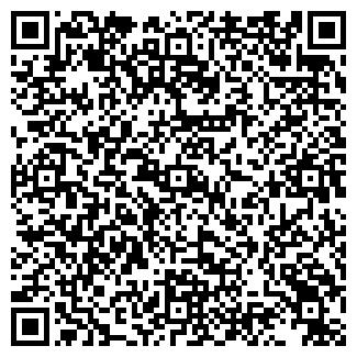 QR-код с контактной информацией организации Озюменко, ЧП