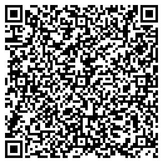 QR-код с контактной информацией организации Элинвар, ООО