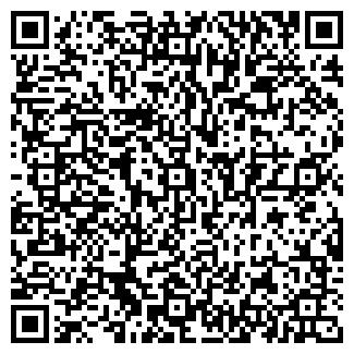 QR-код с контактной информацией организации Металлум, ЧП
