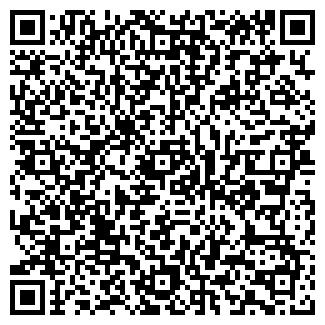 """QR-код с контактной информацией организации ООО """"Анис"""""""
