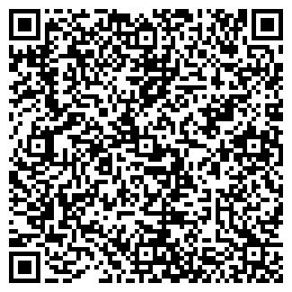 QR-код с контактной информацией организации Аметист, ТОО
