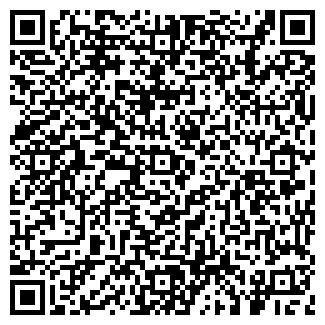QR-код с контактной информацией организации ИП Бирило П.Г.