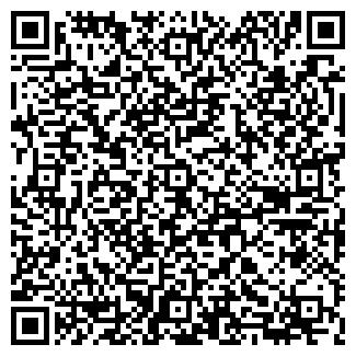 QR-код с контактной информацией организации Субъект предпринимательской деятельности Автодом