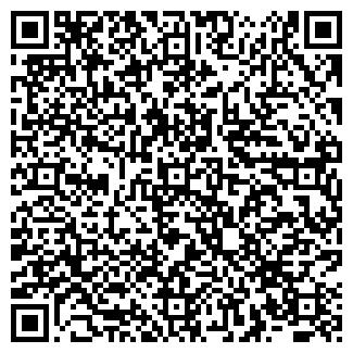 QR-код с контактной информацией организации Mag (Маг), АО