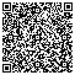QR-код с контактной информацией организации РДВ Инвест Строй, ТОО