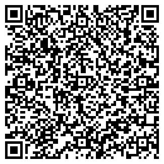 QR-код с контактной информацией организации VIP-Project