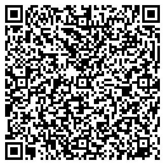 QR-код с контактной информацией организации Торшер, ЧП
