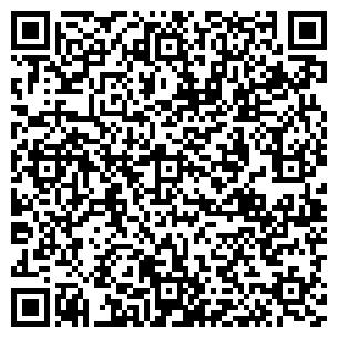 QR-код с контактной информацией организации Preciosa-люстры, СПД